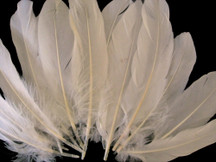 1/4 Lb - Ivory Goose Satinettes Wholesale Loose Feathers (Bulk)