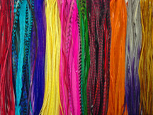 100 Pieces - Colorful Thin Long Rooster Hair Extension Wholesale Feathers (Bulk)