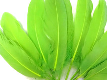 1/4 Lb - Lime Green Goose Satinettes Wholesale Loose Feathers (Bulk)