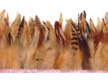 1 Yard - Champagne Chinchilla Rooster Feathers Trim