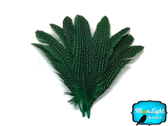 Kelly Green Polka Dot Guinea Fowl Wing Quills Feathers