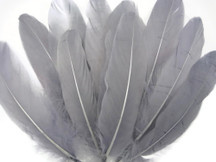 1/4 Lb - Grey Goose Satinettes Wholesale Loose Feathers (Bulk)