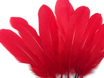 1/4 Lb - Red Goose Satinettes Wholesale Loose Feathers (Bulk)