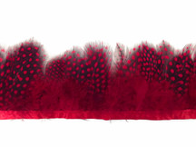 1 Yard - Red Guinea Hen Plumage Feather Trim
