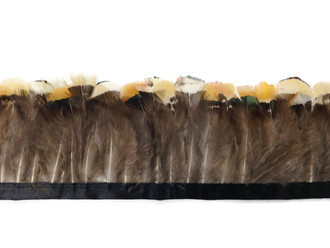 Yellow Lady Amherst Pheasant Plumage Feather Trim