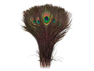 """10-12"""" Natural Peacock Tail Eye Wholesale Feathers (Bulk)"""
