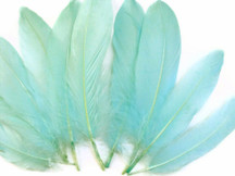 1/4 Lb - Aqua Blue Goose Satinettes Wholesale Loose Feathers (Bulk)