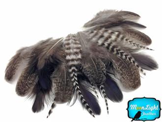 2 Dozen - Mix Natural Brahma Hen Loose Feather