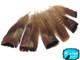 5 Pieces - Natural Bronze Wild Turkey Tail Feathers