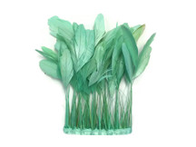 1 Yard - Aqua Green Stripped Coque Tail Feathers Wholesale (Bulk)