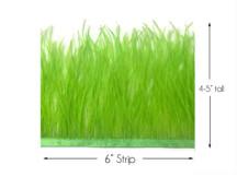 6 Inch Strip - Lime Green Ostrich Fringe Trim Feather