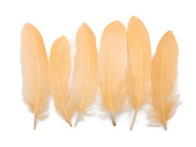 1 Pack - Peach Goose Satinettes Loose Feathers 0.3 Oz.