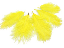 1 Pack - Yellow Ostrich Small Confetti Feathers 0.3 Oz