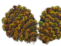 1 Piece - Green Gold Peacock Plumage Feather Pad