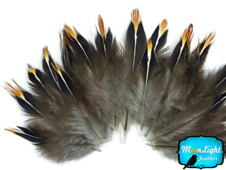 Natural Jungle Cock Tip Body Feathers