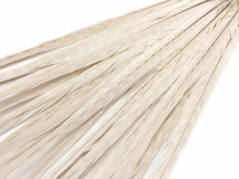 "20-22"" Ivory Long Ringneck Pheasant Tail Wholesale Feathers (Bulk)"