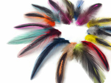 1 Pack - Colorful Mini Laced Hen Cape Feathers 0.02 Oz. (Bulk)