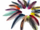 Colorful Mini Laced Hen Cape Feathers 0.02 Oz. (Bulk)