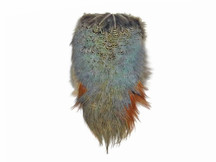 1 Piece - Natural Ringneck Pheasant Feather Complete Rump Patch