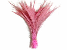 50 Pieces - Baby Pink Bleached Peacock Swords Cut Wholesale Feathers (Bulk)