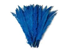 1/2 Lb  - Turquoise Blue Ostrich Nandu Trimmed Long Wholesale Feathers (Bulk)