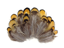 Multicolored natural craft feathers