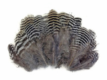 Natural patterned striped short fluffy feathers