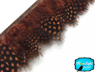 Brown Guinea Hen Plumage Feather Trim