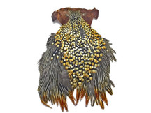 1 Piece - Grade B Natural Gold Jungle Cock Cape Complete Skin Pelt With Feather