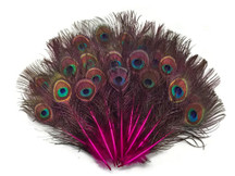 10 Pieces - Hot Pink Mini Natural Peacock Tail Body Feathers With Eyes