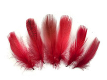 1 Pack - Red Mallard Duck Flank Feathers 0.10 Oz.