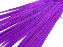 "20-22"" Purple Long Ringneck Pheasant Tail Wholesale Feathers (Bulk)"