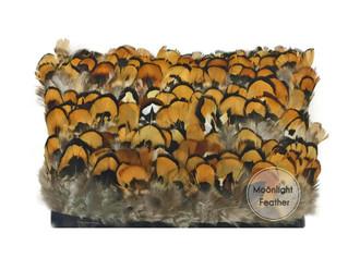 Natural Gold Venery Pheasant Plumage Feather Trim