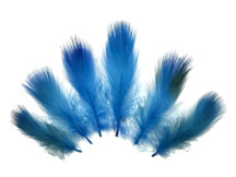 1 Pack - Turquoise Blue Mallard Duck Flank Feathers 0.10 Oz.
