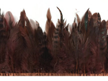 Dark brown fluffy small strip of feathers