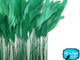 Kelly Green Stripped Coque Tail Feathers Wholesale (Bulk)