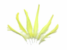 4 Pieces - Yellow Moluccan Cockatoo Topknot Feather
