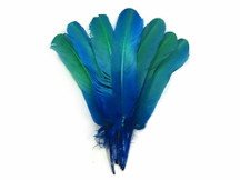 1/4 Lb - Blue Green Ombre Turkey Rounds Tom Wing Quill Wholesale Feathers (Bulk)