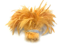 Strip of yellow orange fluffy rooster feathers