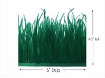 6 Inch Strip - Hunter Green Ostrich Fringe Trim Feather
