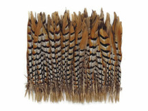 Patterned large brown and red and yellow feathers for crafts
