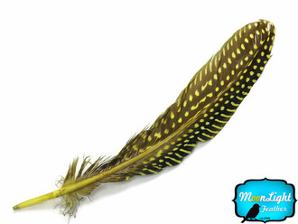1/4 Lb - Yellow Polka Dot Guinea Fowl Wing Quills Wholesale Feathers (Bulk)