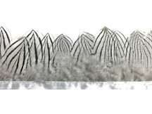 1 Yard - Natural White Silver Pheasant Plumage Feather Trim