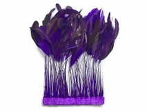 Eggplant Stripped Coque Tail Feathers Wholesale (Bulk)