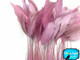 1 Yard - Light Pink Stripped Coque Tail Feathers Wholesale (Bulk)