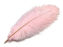Soft pink wispy large feathers for centerpieces, weddings, decor, costumes, and crafts.