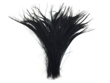 50 Pieces - Black Bleached Peacock Swords Cut Wholesale Feathers (Bulk)