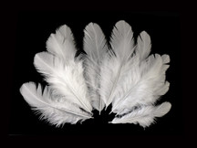 Natural White Hen Saddle Wholesale Feathers