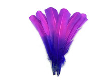 1/4 Lb - Pink Purple Ombre Turkey Rounds Tom Wing Quill Wholesale Feathers (Bulk)