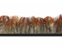 Brown and red spotted and dotted natural rare pheasant feathers for crafts, sewing, and decoration.